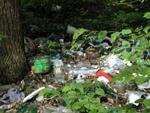 овраг мусора